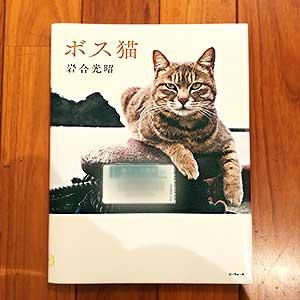 ボス猫,2021/3/26岩合光昭 (写真)ジーウォーク